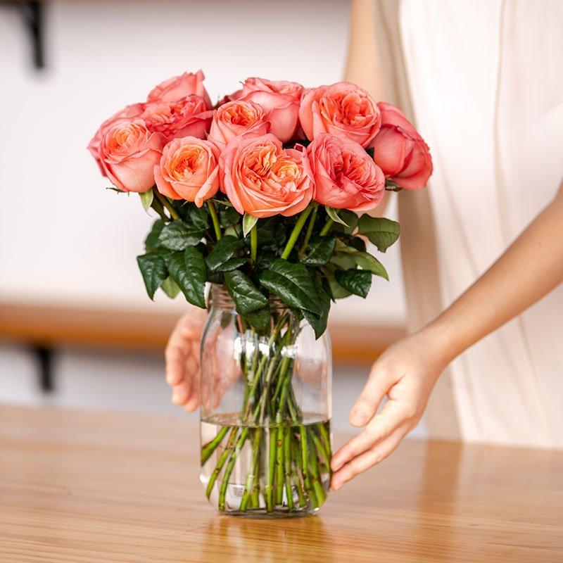 hoa hồng enjoya