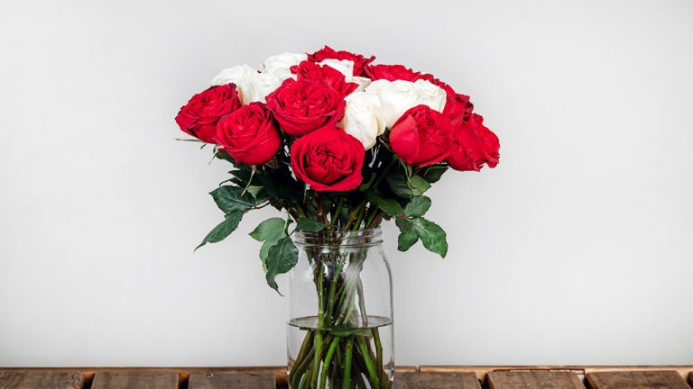 vị trí tốt nhất để đặt hoa trong nhà và văn phòng